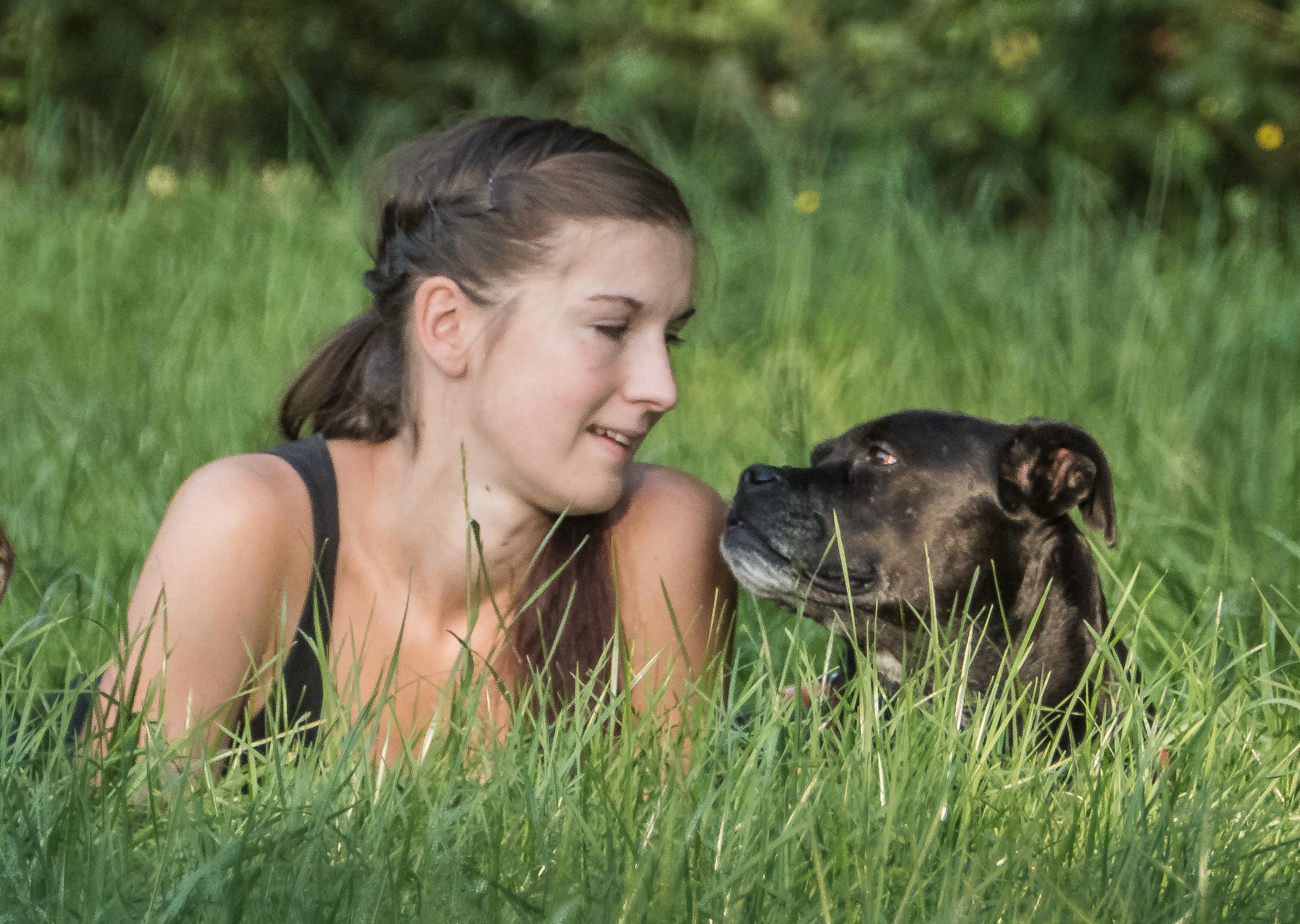 Arthrose Hundephysiotherapie Wilsdruff Zauberhunde