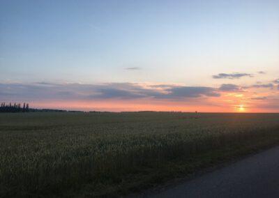 Sonnenuntergang Aussicht Hundepension Hundephysio Wilsdruff