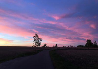 Hundepension Hundephysio Wilsdruff Sonnenuntergang am Feld