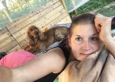 Hundepension Hundephysio Wilsdruff Cocker Spaniel im Bett