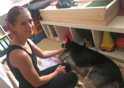Blutegeltherapie Hund Arko