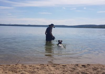 Ich&Lucky See Görlitz Hundephysio Tierheilpraxis Wilsdruff