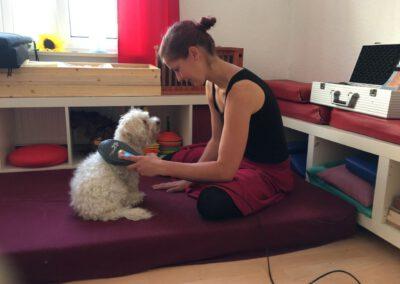 Lasertherapie Hundephysiotherapie Tierheilpraxis Wilsdruff Dresden Zauberhunde