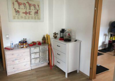 Räume Praxis für Hunde Hundephysio Tierheilpraxis Wilsdruff