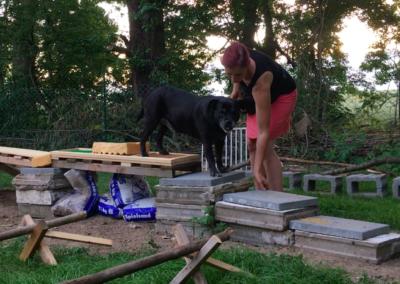 Happy Treppe Garten Hundepension Hundephysio Tierheilpraxis Wilsdruff