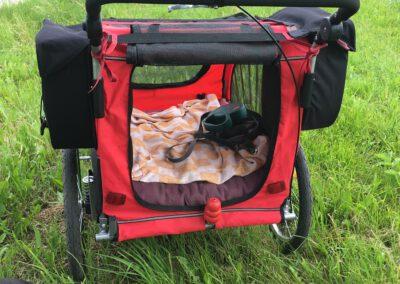 Hundewagen mit Packtaschen Hundepension Hundephysio Wilsdruff
