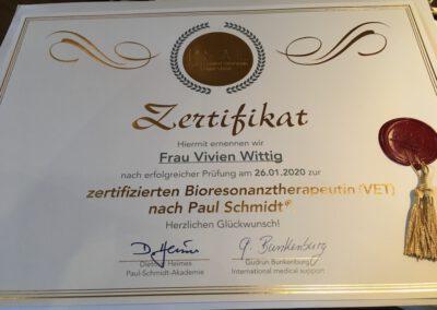 Bioresonanz-Analyse Bioresonanztherapie Paul Schmidt Hundephysio Tierheilpraxis Wilsdruff