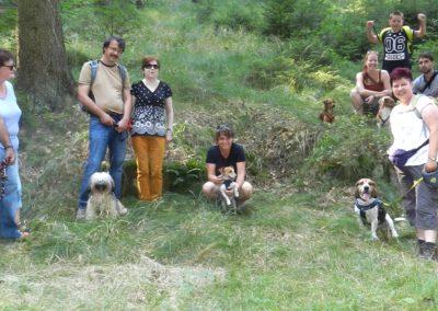 Hundewanderung Hundetraining Hundepension Wilsdruff