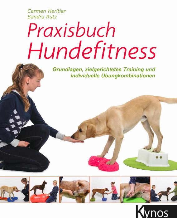 Praxisbuch Hundefitness Hundephysiotherapie Zauberhunde Praxis für Hunde