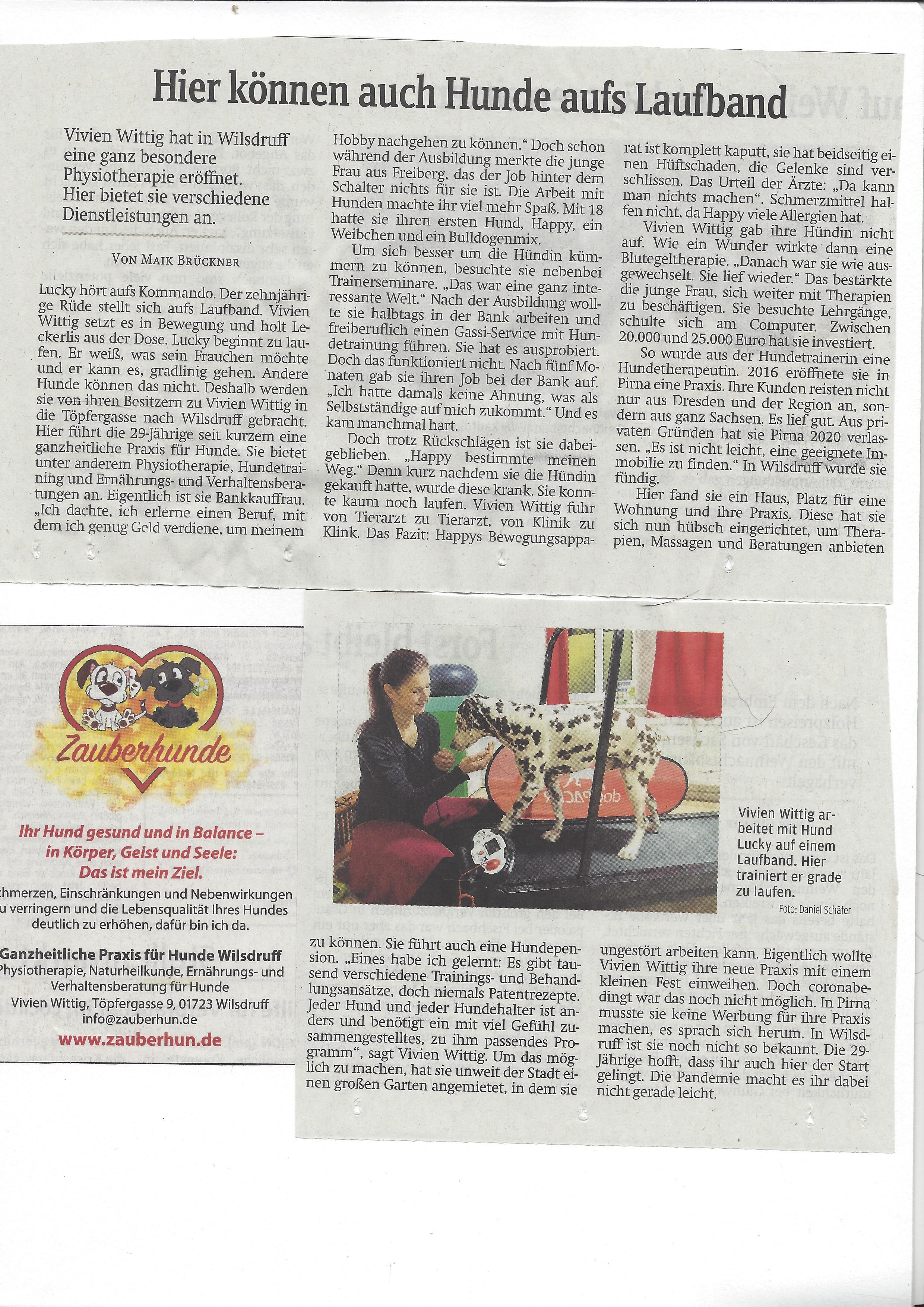 Zauberhunde  Zeitungsartikel Hundepension Hundephysio Tierheilpraxis Wilsdruff Dresden