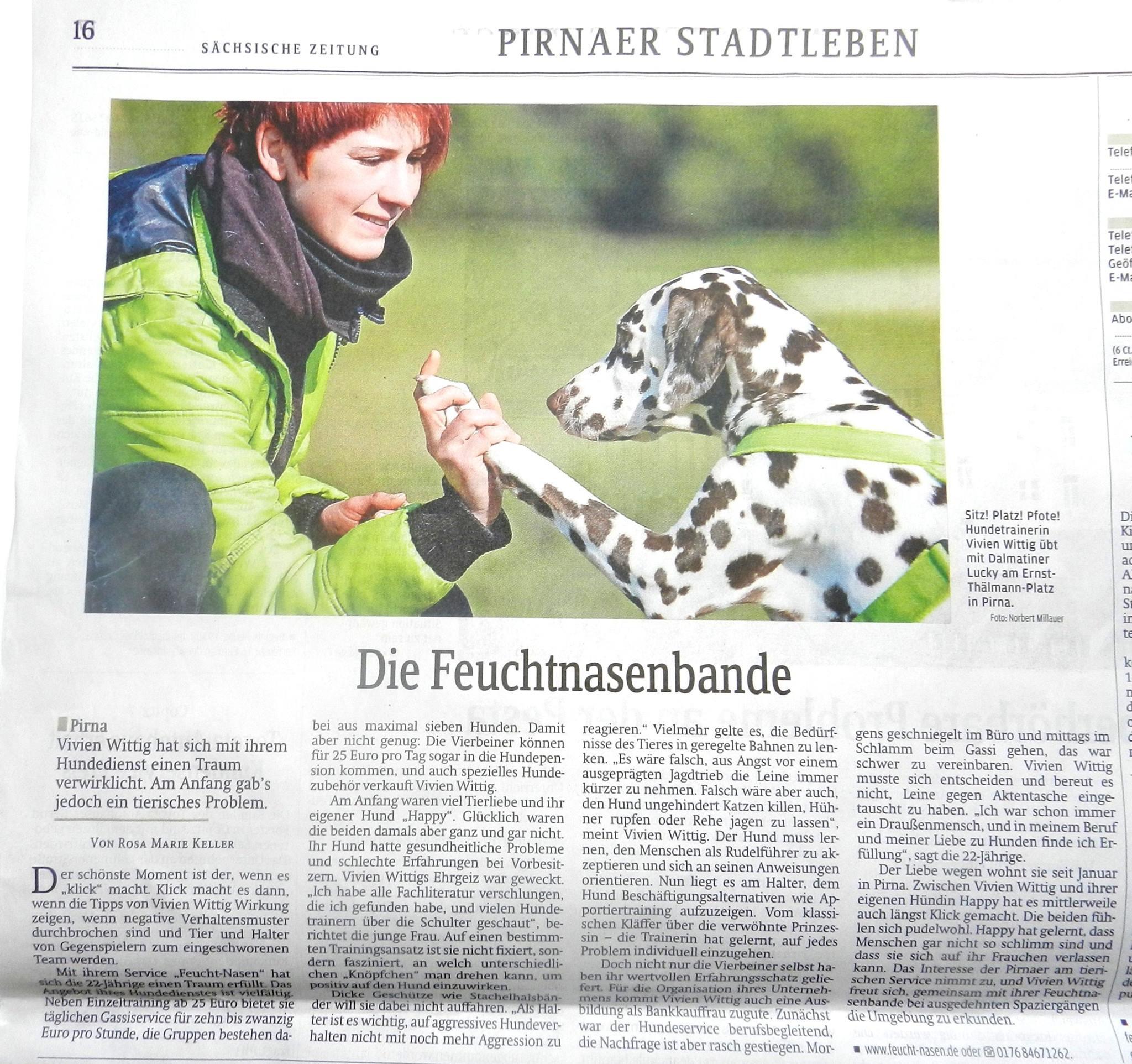 Zauberhunde Feuchtnasen Zeitungsartikel Hundepension Hundephysio