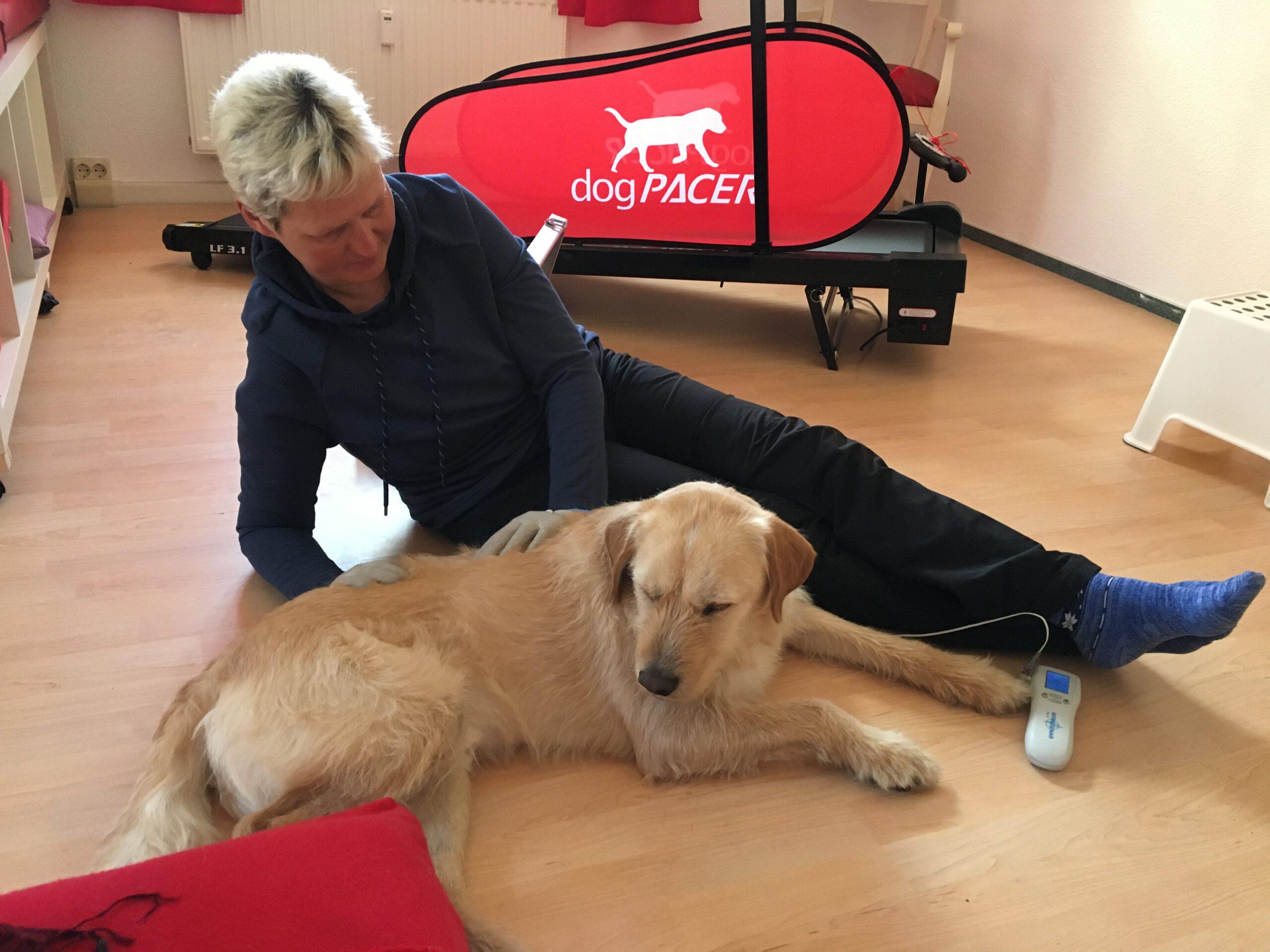 Hundephysiotherapie mit Frauchen Zauberhunde Wilsdruff Tierheilpraxis