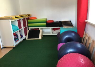 Hundephysio Wilsdruff Fitness für Hunde Bewegungstherapie