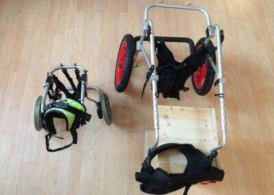 Rollstuhl für Hunde Leihrolli 2 Zauberhunde Wilsdruff