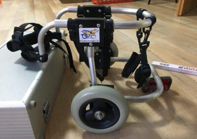 Mini Rolli Rollwagen für Hunde Tierorthopädische Hilfsmittel Zauberhunde